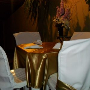 capas cadeiras 5 300x300 - Capas para Cadeiras