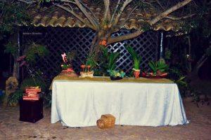 toalha banquete 3 300x200 - Toalhas Banquete