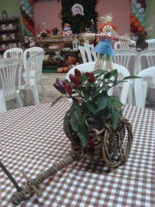 toalhas mesa plastico 10 225x300 - Toalhas Mesa Plástica