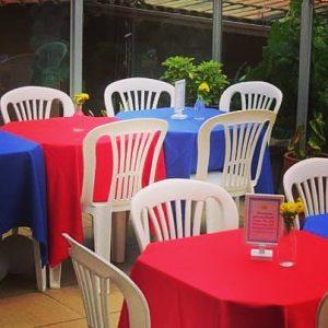 toalhas mesa plastico 202 300x300 - Toalhas Mesa Plástica