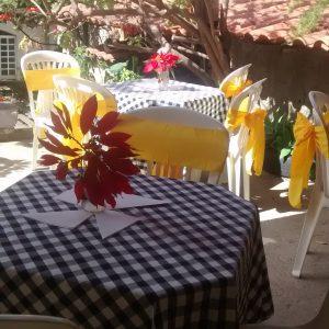 toalhas mesa plastico 206 300x300 - Toalhas Mesa Plástica